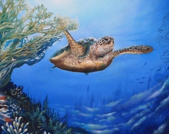 Sea Turtle original oil painting 20 x 24 gallery wrapped canvas