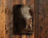 The Little Paint - Horse photography - Rustic Art - Horse art - Horse canvas art - Brown Horse art - Western art - Animal photography