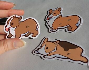 cute corgi fridge magnets
