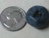 50 Monster Blueberry Seeds-1314