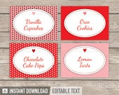 Valentine's Day Hearts Party - Food Labels / Place Cards - Pink and Red - INSTANT DOWNLOAD - Printable PDF with Editable Text