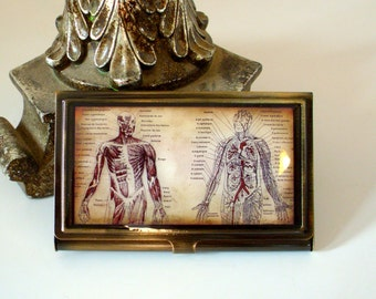 Anatomy Card Case in Brushed Brass - Anatomy ID Case - Antique French Anatomical Circulatory System Print Wallet