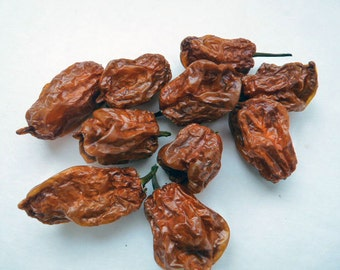 Whole Dried Habanero Peppers//HOT Chili Pepper