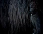 Black horse photography, Horse eyes Friesian up close photo print Nursery wall art for kids bedroom. Baby or children room farm animal decor