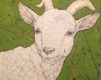 Unframed reproduction print -Goat