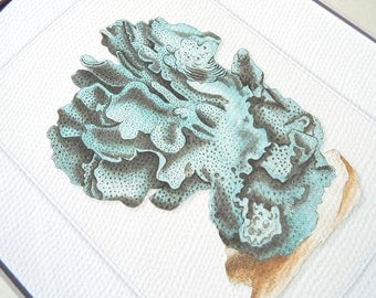 Ocean Blue Sea Coral Form Archival Print on Watercolor Paper
