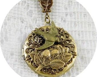 Locket, Necklace, Locket Necklace, Antique Brass Locket, Round Locket, Bird, Bird Nest