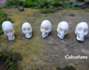 Amazing detail   Hand Carved  tiny skulls, 5 pieces  Skulls,  Beads , Carved Ox Bone , Drilled top to bottom S2569