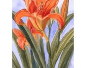Orange Painting Daylily Original Watercolor Flower Artwork Matted 8x10 Floral Art by Janet Zeh