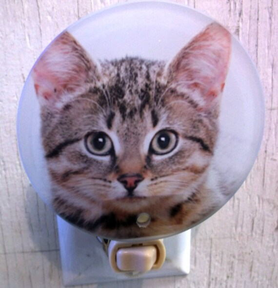 tabby kitten night light, kitten night light, cat night light, animal night light, bathroom night light, kids night light, childrens light