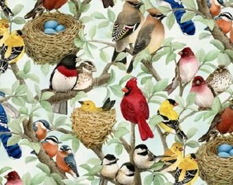 Fat Quarter Beautiful Birds Housing Boom Azure Cotton Quilting Fabric