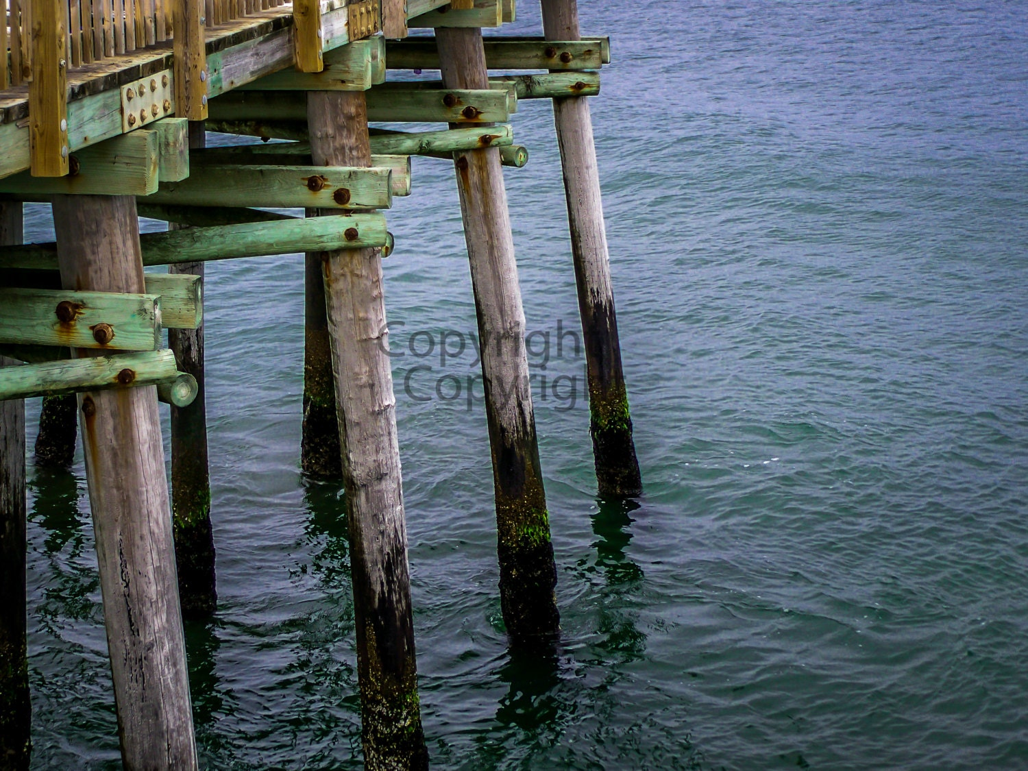 Fishing pier docks at virginia beach 8x10 lustre by for Fishing piers in va