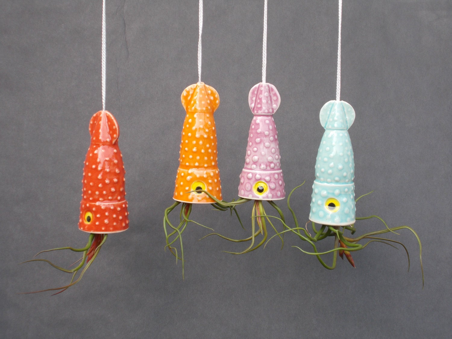 Air Plant Planter Hanging Planter Small Squid by CindySearles - photo#26