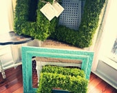 Southern Living Moss Wreath