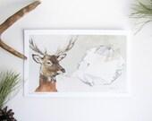 Woodland Crystals Print