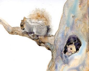 Two Squirrels in a Tree - Watercolor