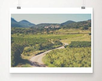 road photograph France photograph vineyard photograph travel photography mountains photograph French decor vineyard print