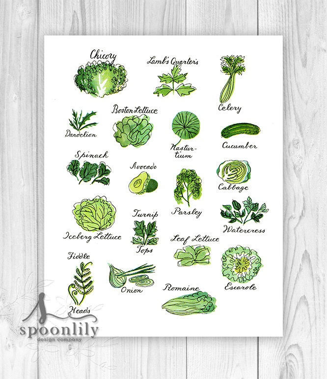 Kitchen Art Print Kitchen Wall Decor Vintage Herb By SpoonLily