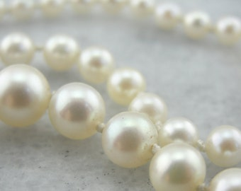 Graduated Fine Pearl Necklace with Carved Clasp FNNHN7-D