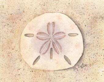 Sand Dollar Watercolor Illustration, Print, Gift, Beach Art, Wall Art, Sea Life, Nautical