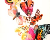 Moth #5 PRINT 8X10