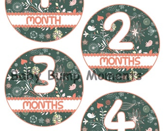 Floral Baby Month Stickers Girl, Monthly Age Stickers, Set of 12 Month to Month Stickers