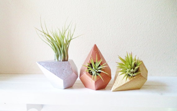 Geometric air plant holder trio, hostess gift set, office gifts, metallic home accents, teardrop planter