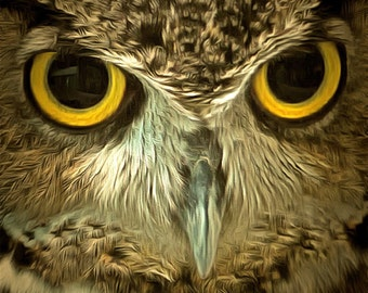 Great Horned Owl Up Close Photo Image Unframed