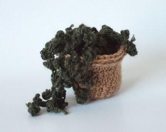 Succulente crochet. Amigurumi: Senecio Rowleyanus. Everlasting Exotic Garden