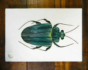 beetle art tile handmade ceramic trivet wall tile