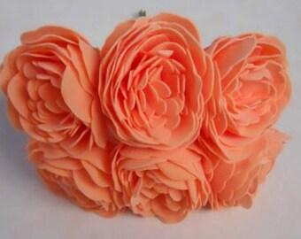 Apricot Farbe Mischen