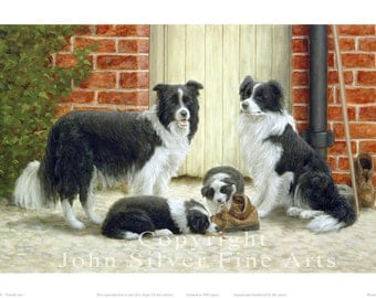Border Collie Portrait, Family ties. Limited Edition Print. Personally signed and numbered by Award Winning Artist JOHN SILVER. jsfa036