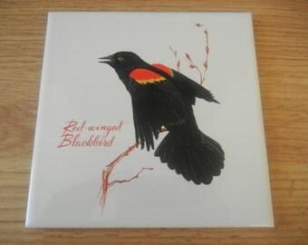 Red-winged Blackbird Bird Screencraft Ceramic Tile