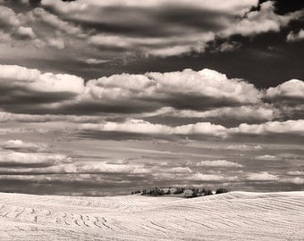 After the Harvest Palouse Photograph, Black & White Photograph, Classic Landscape Photography for Your Home and Office Wall Decor