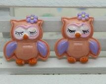 Cute Sleeping Owl Chevron Resin Cabochons Flatbacks Flat Back Resin Girl Hair Bow Center Frame Crafts DIY