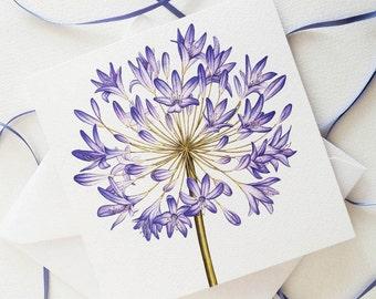 Agapanthus Botanical Flower Painting Luxury Greeting Card