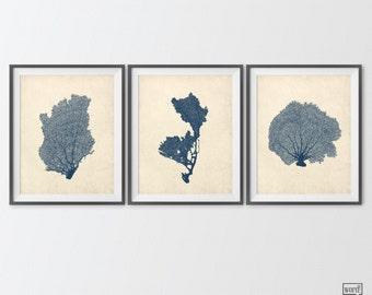 Navy Blue Sea Coral, 3 Print Set, Antique Indigo Sea Fan Art, Cobalt Blue Nautical Home Decor, Beach House Decor, Ocean Art