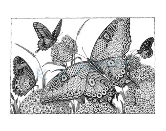 """Limited Edition Butterfly Beauty- 16"""" x 20"""" matted, limited edition print of original ink drawing"""