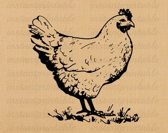 Chicken digital image, instant download, printable iron on fabric transfer, downloadable images, clip art, scrapbooking - no. 212