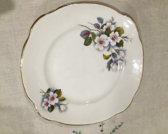 vintage china plate with briar roses