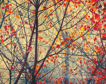 Tree print,  red  leaves, fall colors,  fog, whimsical art print, tree wall art, abstract, surreal photography,  home decor, wall decor.