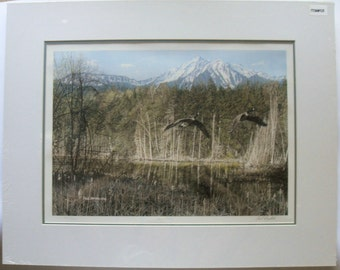 """Canadian Geese, Signed Limited Edition Artist's Proof, Courting by Paul Rankin (24"""" x 19"""")"""