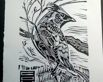 Cedar Waxwing (Bombycilla cedrorum) - Linoleum Block Print - 7x5