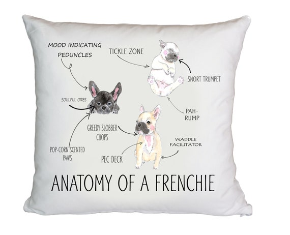 Anatomy of a French Bulldog Cushion Cover Pillow Cover - Funny Dog cushion - Modern pillow- Sofa pillow case - Funny pillow by  Retrostate