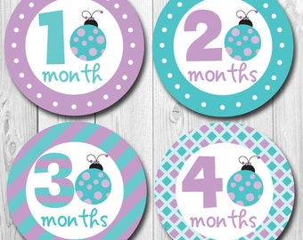 Ladybug Monthly Stickers, Baby Stickers for Girls, Girl Month Stickers, Little Ladybug Baby, Shower Gift, Teal & Purple, Milestone Sticker