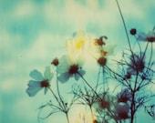Nature Daisy Flowers Green Photography decor Flower Landscape Green Print Photo - Fine Art Photography Polaroid Boho Nature Romantic Hippie