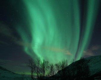 Aurora Borealis Northern Lights Norway - Fine Art Photography Print Winter Nature Night Sky Home Decor Scandinavian home