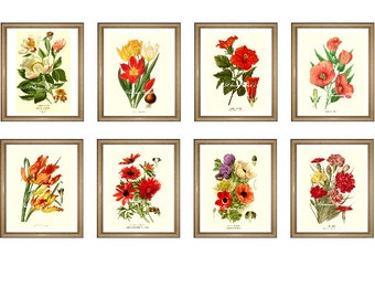 "Custom Set. ANY 8 botanical prints. Floral Wall Art Set. Flower prints set.  5x7"" 8x10"" 11x14"""