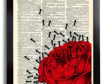 Red Rose Ants Ant Art Print Book Page Print Recycled Dictionary Print Collage Repurposed Book Rose Wall Decor Rose Poster 458