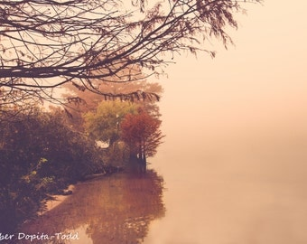Foggy Autumn Morning in Austin, Texas Fine Art Photo Print